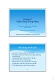 Bài giảng Tài chính Phát triển: Bài 7 - Đỗ Thiên Anh Tuấn