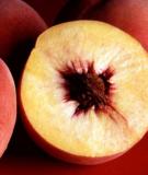 6 loại trái cây hay bị ngâm hóa chất nhất bạn phải biết để tránh