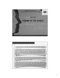 Bài giảng Hành vi tổ chức: Chương 1 - ThS. Phan Quốc Tuấn