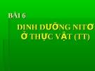 Bài giảng Sinh học 11 bài 6: Dinh dưỡng nitơ ở thực vật (tiếp theo)