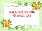 Slide bài Quang hợp ở thực vật - Sinh 11 - GV.Phạm A.Thắng