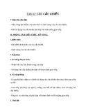 Giáo án bài Câu cầu khiến - Ngữ văn 8