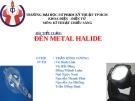 Báo cáo môn Kỹ thuật chiếu sáng: Đèn metal halide