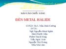 Báo cáo môn Kỹ thuật chiếu sáng: Đèn metal halide 2