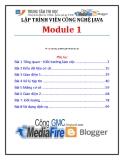 Giáo trình Lập trình viên công nghệ Java (Module 1) - Trung tâm tin học ĐH KHTN
