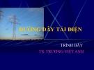Bài giảng Hệ thống điện: Đường dây tải điện - TS. Trương Việt Anh