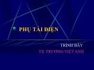 Bài giảng Hệ thống điện: Phụ tải - TS. Trương Việt Anh