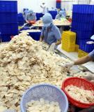 Luận văn tốt nghiệp: Khảo sát qui trình sản xuất bánh phồng tôm và hiệu suất thu hồi ở công ty cổ phần thực phẩm Bích Chi