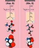 71 Bài trắc nghiệm Aminoaxit-peptit-protein