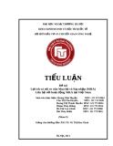 Tiểu luận Đầu tư quốc tế: Lợi ích và rủi ro của Mua lại và Sáp nhập (M&A). Liên hệ với hoạt động M&A tại Việt Nam