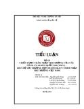 Tiểu luận Đầu tư quốc tế: Chiến lược thâm nhập thị trường của các công ty xuyên quốc gia (TNCS) – Liên hệ với trường hợp Mcdonald's thâm nhập thị trường Việt Nam