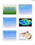 Bài giảng Hệ sinh thái Ecosystem