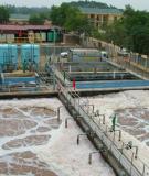 Tiểu luận: Quy trình xử lý nước thải ở nhà máy giấy