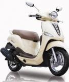 Luận văn thạc sĩ: Nghiên cứu các yếu tố ảnh hương đến quyết định mua xe gắn máy tay ga của người dân thành phố Hồ Chí Minh - Nguyễn Lưu Như Thụy