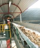 Đề tài: Tìm hiếu cấu tạo, nguyên tấc hoạt động, các dạng hư hỏng và đề xuất các biện pháp  khắc phục của một sổ thiết bị chính trong dây chuyền sản xuất tinh bột sắn tại nhà máy FOCOCEV Thừa Thiên Huế