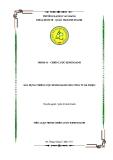 Tiểu luận: Xây dựng chiến lược kinh doanh cho công ty Bà Triệu