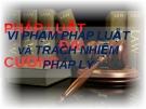 Bài thuyết trình Pháp luật đại cương: Vi phạm pháp luật và trách nhiệm pháp lý