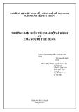 Tiểu luận Thương mại điện tử: Thái độ và hành vi người tiêu dùng