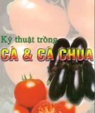 Ebook Kỹ thuật trồng cà và cà chua: Phần 2 - GS.TS. Đường Hồng Dật
