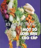 Ebook Kỹ thuật trồng một số loại rau cao cấp: Phần 2  - PTS. Mai Thị Phương Anh