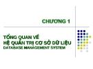 Bài giảng Chương I: Tổng quan về Hệ quản trị cơ sở dữ liệu (Database Management System)