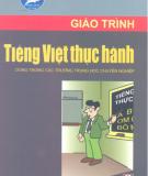 Giáo trình Tiếng Việt thực hành: Phần 2 - Trịnh Thị Chín