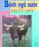 Chăm sóc bệnh ngã nước ở trâu bò: Phần 2