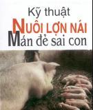 Hướng dẫn nuôi lợn nái mắn đẻ sai con: Phần 2