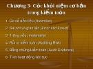 Bài giảng Lý thuyết kiểm toán: Chương 3 Các khái niệm cơ bản trong kiểm toán