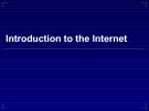Bài giảng Tin học cơ sở: Introduction to the Internet