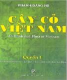 Ebook Cây cỏ Việt Nam (Quyển I): Phần 2 - Phạm Hoàng Hộ