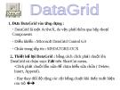 Bài giảng Lập trình trực quan (Ngôn ngữ Visual Basic): Bài 4 - DataGrid