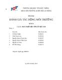 Báo cáo đánh giá tác động môi trường: Phát triển bền vững ở Việt Nam (nhóm 4)