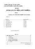 Báo cáo đánh giá tác động môi trường: Các vấn đề môi trường quan trọng (nhóm 8)