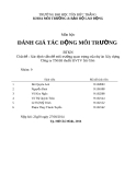 Báo cáo đánh giá tác động môi trường: Xác định vấn đề môi trường quan trọng của dự án xây dựng công ty TNHH thuốc BVTV Sài Gòn (nhóm 9)