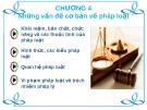 Bài giảng Pháp luật đại cương - Chương 4: Những vấn đề cơ bản về pháp luật