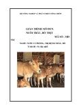 Giáo trình Nuôi trâu, bò thịt - MĐ04: Chăn nuôi và phòng trị bệnh cho trâu bò