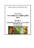 Giáo trình Thu hoạch và bảo quản hoa - MĐ05: Trồng hoa huệ, lay ơn, đồng tiền, hồng môn