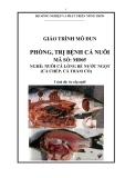 Giáo trình Phòng, trị bệnh cá nuôi - MĐ05: Nuôi cá lồng bè nước ngọt (cá chép, cá trắm cỏ)
