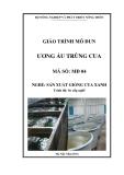 Giáo trình Ương ấu trùng cua - MĐ04: Sản xuất giống cua xanh