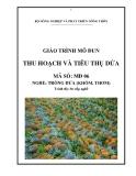 Giáo trình Thu hoạch và tiêu thụ dứa - MĐ06: Trồng dứa (khóm, thơm)