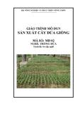 Giáo trình Sản xuất cây dứa giống - MĐ02: Trồng dứa
