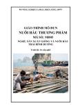 Giáo trình Nuôi hàu thương phẩm - MĐ05: Sản xuất giống và nuôi hàu Thái Bình Dương