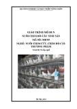 Giáo trình Nuôi chim bồ câu sinh sản - MĐ05: Nuôi chim cút, chim bồ câu thương phẩm