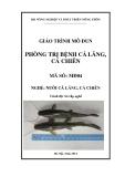 Giáo trình Phòng trị bệnh cá lăng, cá chiên - MĐ04: Nuôi cá lăng, cá chiên