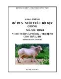 Giáo trình Chăn nuôi trâu, bò đực giống - MĐ01: Chăn nuôi và phòng trị bệnh cho trâu bò
