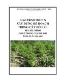 Giáo trình Xây dựng kế hoạch trồng cây bời lời - MĐ01: Trồng cây bời lời
