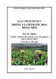 Giáo trình Trồng và chăm sóc hoa hồng môn - MĐ04: Trồng hoa huệ, lay ơn, đồng tiền, hồng môn
