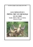 Giáo trình Phòng trừ sâu bệnh hại - MĐ05: Trồng tre lấy măng