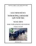 Giáo trình Nuôi dưỡng, chăm sóc lợn nuôi thả - MĐ03: Nuôi lợn rừng, lợn nuôi thả